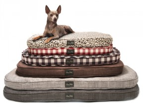 Harry's Favorite Futon Dog Beds
