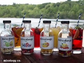 Mixology Co. Cocktail Infusions