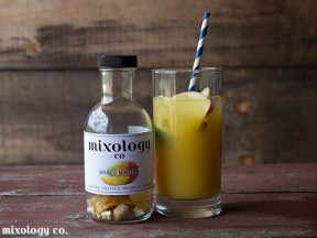 Mixology Co. Cocktail Infusions - Mango Martini