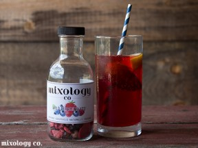 Mixology Co. Cocktail Infusions - Wild Berry Mojito