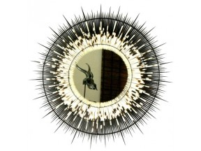 Porcupine Quill Mirror