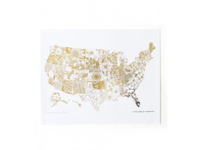 USA STATE 16 X 20 GOLD FOIL MAP